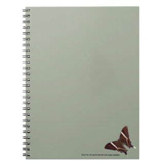 Notebook with a picture of giant moth