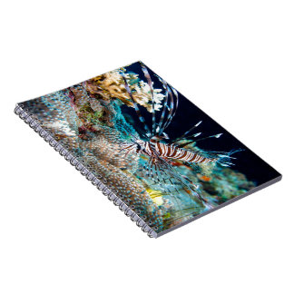 Notebook with Lionfish cover