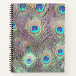 Notebook with Peacock Feather Photos