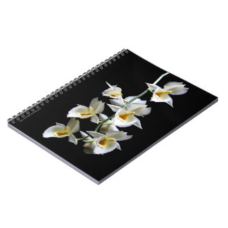 Notebook with white Orchid