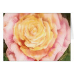 Notecard A Rose Stationery Note Card
