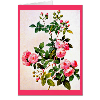 Notecard-Botanicals-Pierre Joseph Redoute 14 Stationery Note Card