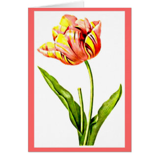 Notecard-Botanicals-Pierre Joseph Redoute 21 Stationery Note Card