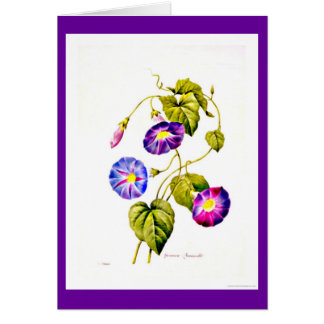Notecard-Botanicals-Pierre Joseph Redoute 6 Stationery Note Card