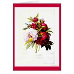 Notecard-Botanicals-Pierre Joseph Redoute 7 Greeting Cards
