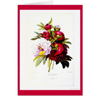 Notecard-Botanicals-Pierre Joseph Redoute 7 Stationery Note Card