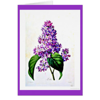 Notecard-Botanicals-Pierre Joseph Redoute 8 Stationery Note Card