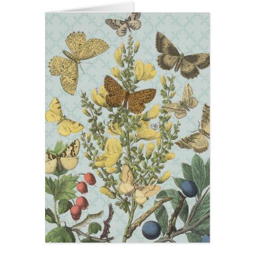 Notecard botánico de las mariposas del vintage… felicitación