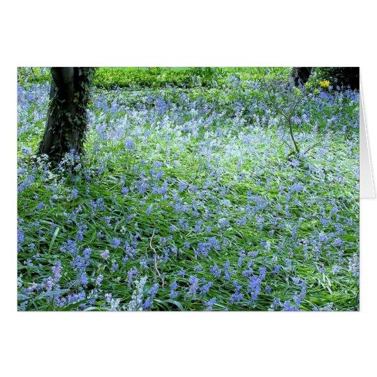"NOTECARD, ""CARPET OF BLUE FLOWERS"" CARD"