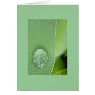 Notecard-Color 2 Terapia-Verdes Tarjeta Pequeña