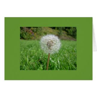 Notecard-Color 9 Terapia-Verdes Tarjeta Pequeña