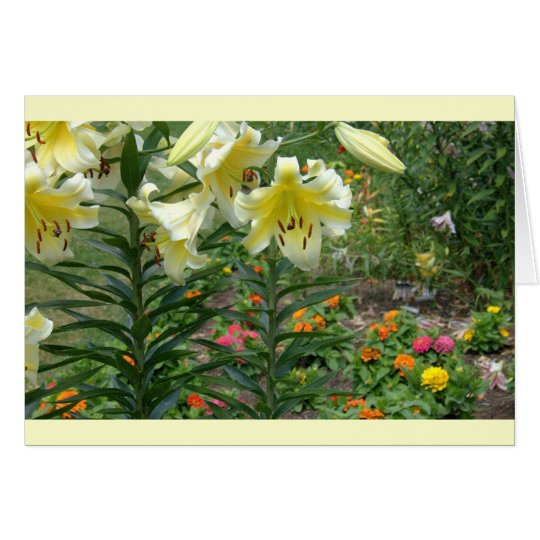 notecard, Colorful Mixed Floral Card