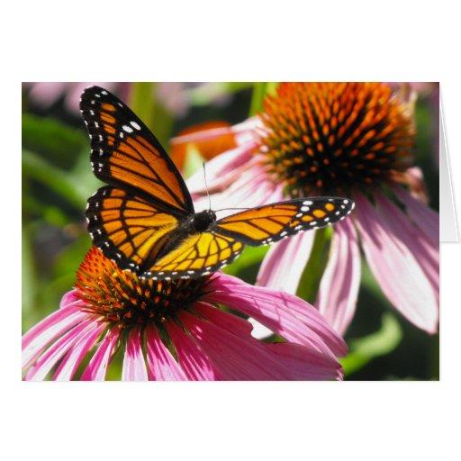 Notecard con la mariposa de monarca tarjeta pequeña