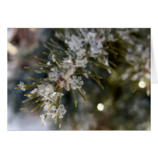 NOTECARD, cristal forma escamas en agujas Spruce Tarjeta De Felicitación