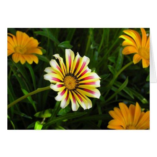 notecard de la flor tarjeta de felicitación
