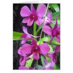 Notecard de la orquídea tarjetón