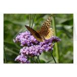 Notecard de la verbena y de la mariposa tarjeta