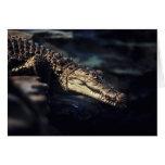 Notecard del cocodrilo del caimán tarjeta de felicitación