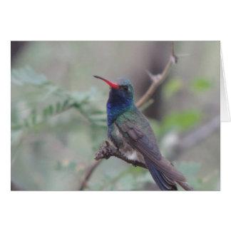 Notecard del colibrí tarjeta pequeña