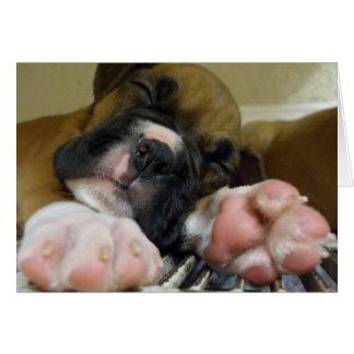 Notecard del perrito del boxeador el dormir tarjeta pequeña