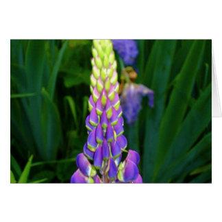 notecard floral de la colección de Nueva Inglaterr