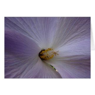 Notecard floral tarjeta pequeña