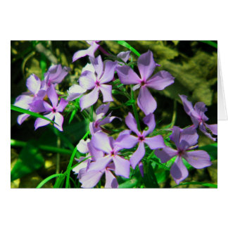 Notecard: Flowers along the Elk River Stationery Note Card