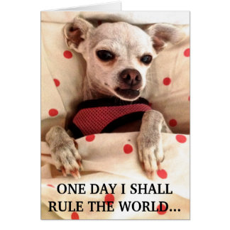 NOTECARD-ONE DAY I SHALL RULE THE WORLD STATIONERY NOTE CARD