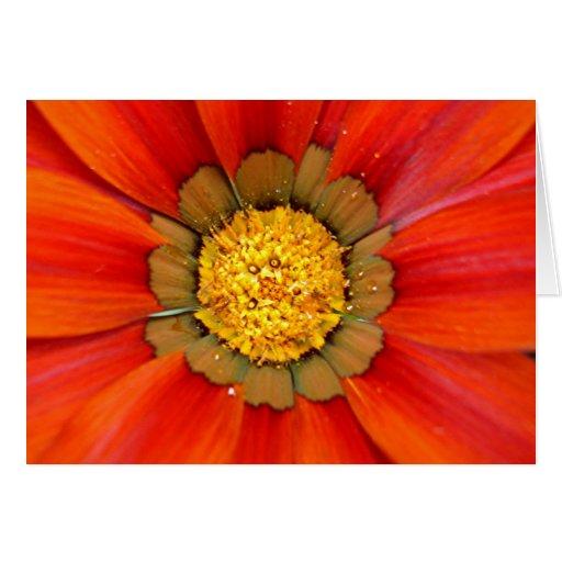 Notecard profundamente anaranjado tarjeta pequeña