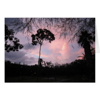 Notecard: Puesta del sol DisneyWorld la Florida Tarjeta Pequeña