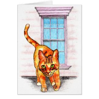 Notecard - Tabby Cat Window
