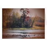 Notecard with Autumn Wetlands Scene
