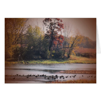 Notecard with Autumn Wetlands Scene