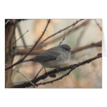 Notecard with Junco Greeting Card