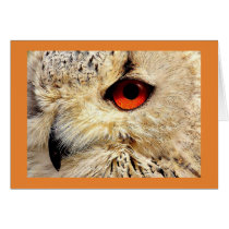 NOTECARD WITH OWL WITH ORANGE EYES