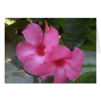 Notecard with pink flowers