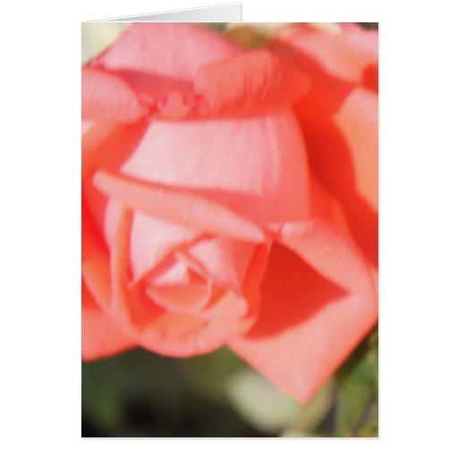 Notecards color de rosa coralino tarjeta pequeña