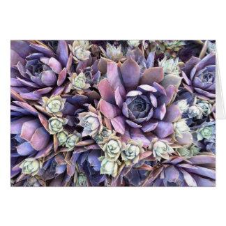 Notecards floral tarjeton
