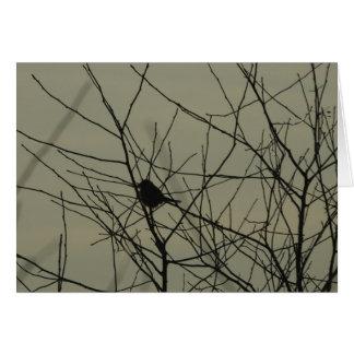 Notecards: Little Bird Card