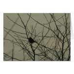 Notecards: Little Bird Stationery Note Card