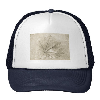 notes to beauty trucker hat