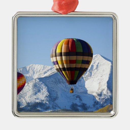 Noth America, USA, Colorado, Mt. Crested Butte, Ornament