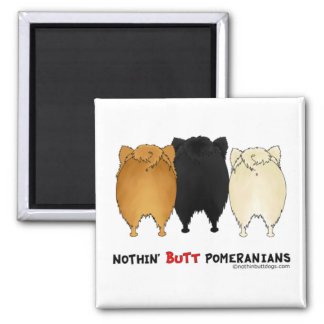 Nothin' Butt Pomeranians 2 Inch Square Magnet