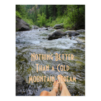 Nothing Better Than a Cold Mountain Stream Postcard