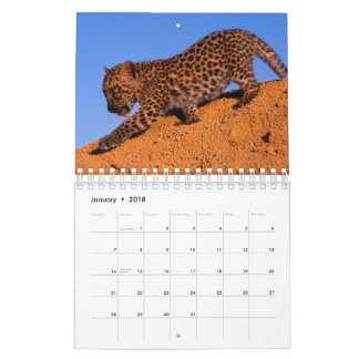 Nothing but Leopards - 2018 Calendar