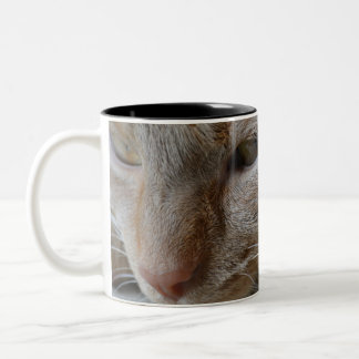 nothing can stop me Two-Tone coffee mug