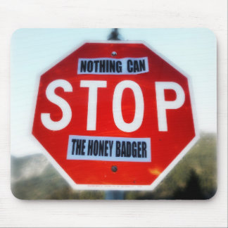 Nothing Can STOP th Honey Badger Mouse Pad