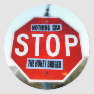 Nothing Can STOP th Honey Badger Classic Round Sticker