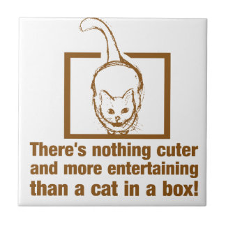 Nothing Cuter And Entertaining Than A Cat In A Box Ceramic Tile