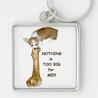 NOTHING is to big for ME!!! Keychains